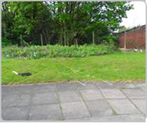 dark-landscaping-birmingham-box